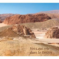 Voix qui crie dans le désert