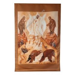 copy of Transfiguration